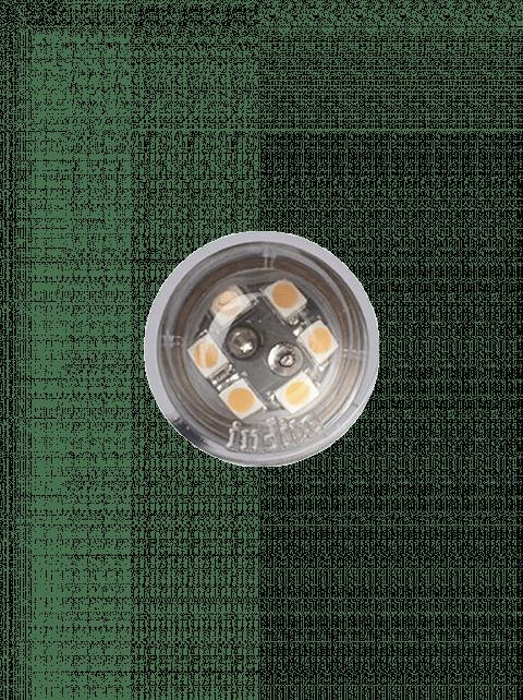DB-LED (WW) 12V