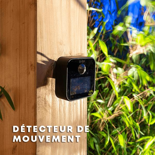 détecteur de mouvement